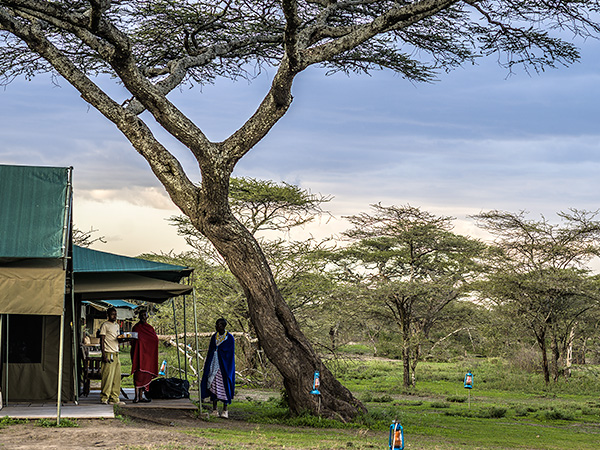 Book a tent at ndutu